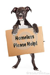Homeless need Family-- can you help?