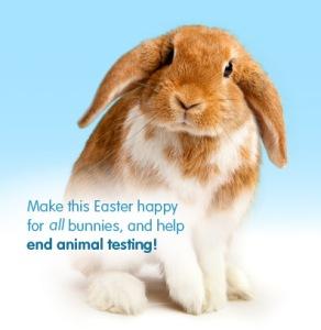 bunny end animal testing