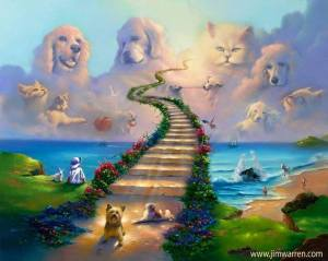 Rainbow bridge with animals