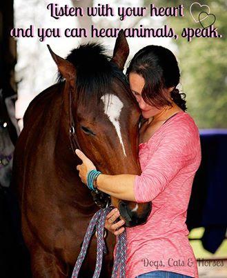 Horse friends (2)