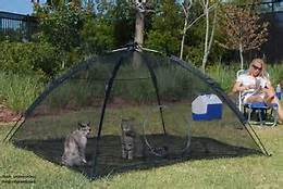 cats-safe