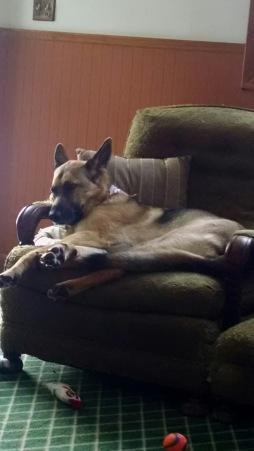 faith-on-couch